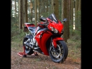 I love Moto