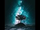 Sia - Chandelier. kaif tree space stars star sky starsky skystar beautiful красиво кайф дерево небо звёздноенебо