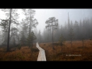 Лапландский заповедник | Заметки с края Света | Мурманская область | Спецвыпуск №2
