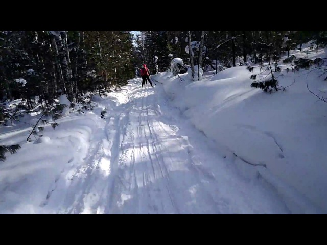 Станция Переезд - Слюдяка. По лесу на лыжах 24.02.18