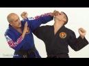 [МастерАнализ] Грандмастер Джон Пеллегрини - Combat Hapkido
