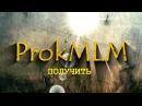 Прок МЛМ Команда Евы Титовой