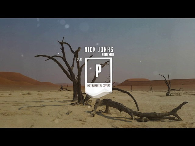 Nick Jonas - Find You ( Instrumental Acoustic )