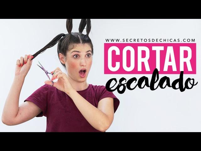 Cómo cortar el cabello escalado con 4 coletas | Hazlo tu misma