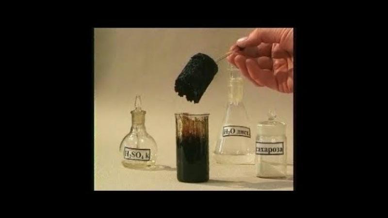 Опыты по химии. Обугливание сахара концентрированной серной кислотой