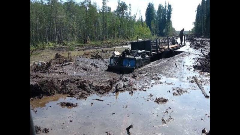 Такого никто не ОЖИДАЛ Мощные вездеходы МТЛБ и ДТ 30 Витязь на бездорожье севера