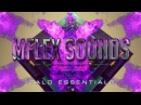 Mflex Sounds I Want You mega italo disco