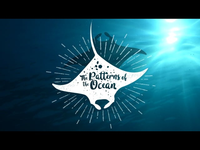 The Patterns of the Ocean - Protecting Indonesias Manta Rays (Trailer)