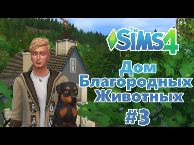 The Sims 4 Дом благородных животных 3 - Полон дом