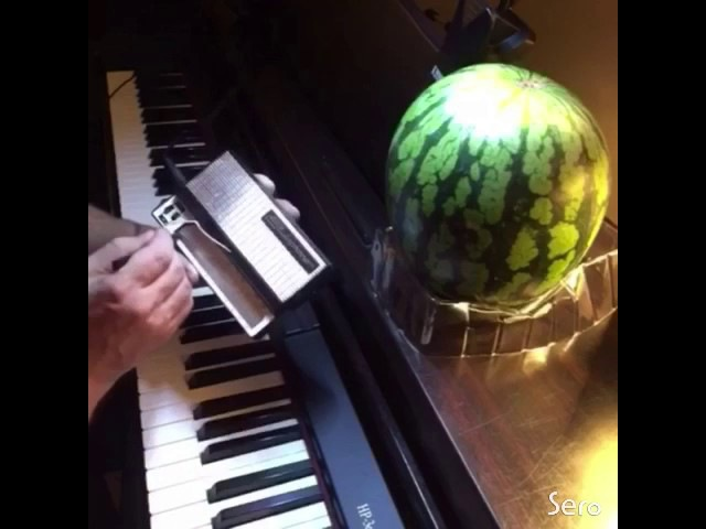 Kirbys Dreamland on Stylophone and Melon)