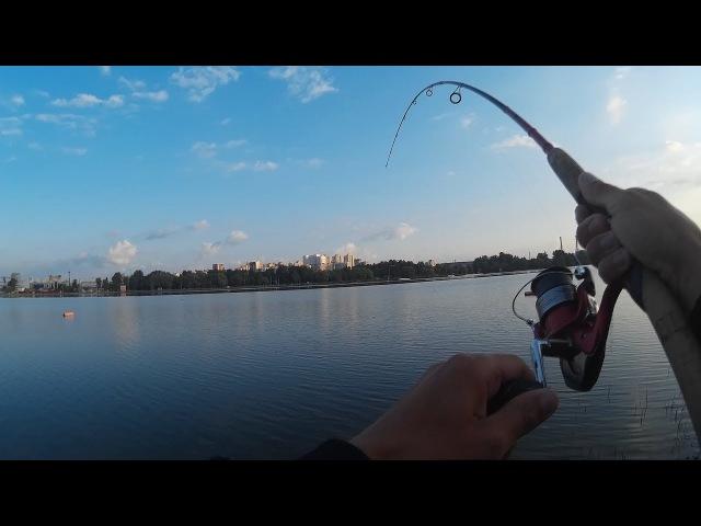 Рыбалка на спиннинг на городском пляже Белгорода