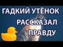 Игрушечный Утёнок Разоблачил Полёты в Космос и Космонавтов Плоская Земля