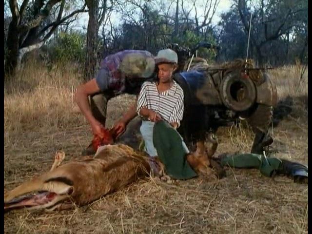 Невероятные приключения янки в Африке 1993