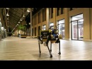 Planning and Control of Skating Motions for Quadrupedal Robots