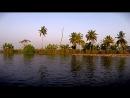 Lotus Garden, Kerala Backwaters