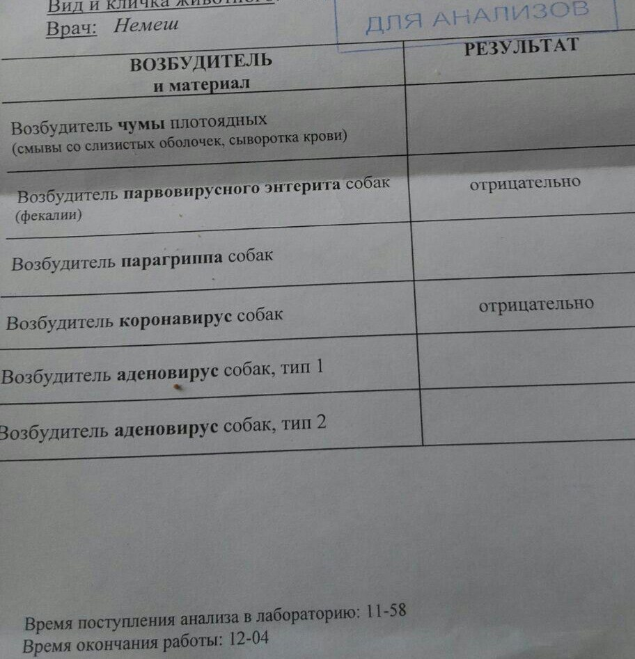 Москва. Дарина, сука, 01.04.2015 FBXvv24GMaA