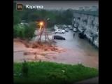 В Приморском крае смыло мост