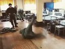 Нижнее вращение РХБЗ РФ / Break Dance The troops of radiation, chemical and biological protection of the Russian Federation vol.1