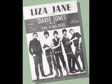 DAVIE JONES AND THE KING BEES - liza janelouie louie go home