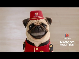 Wholl Get the Role The Hotels.com Mascot Audition