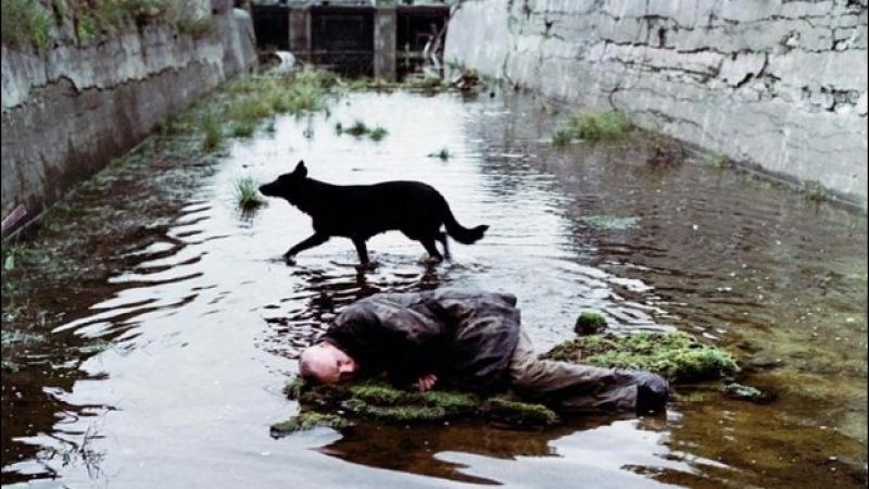 Stalker (1979) Andréi Tarkovski - subtitulada