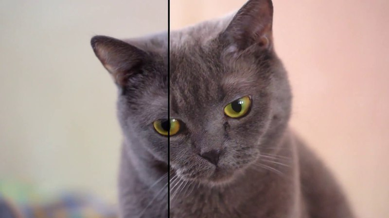 Original Footage vs Premiere Pro render