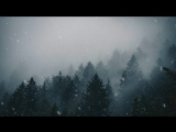 Animated Forest Snow 4k