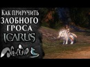 Icarus online RU Как приручить 28 Злобный Грос Берег Парны
