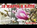 18 марта в Ялте: день выборов и годовщина присоединения Крыма к России