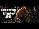 Ronaldo Jacaré Souza - Alligator UFC | Highlightsᴴᴰ | 2018