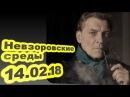 Александр Невзоров Ксения избирается не в Путины а в Медведевы 14 02 18 Невзоровские среды