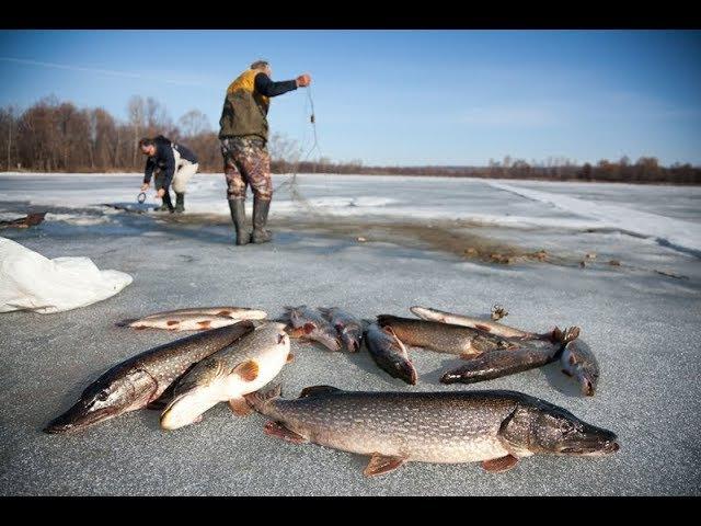 Как Поставить Рыболовные Сети под Лёд, чтоб НЕ УКРАЛИ! Немного СЕКРЕТА и ХИТРОСТИ! Проверяем Сети!