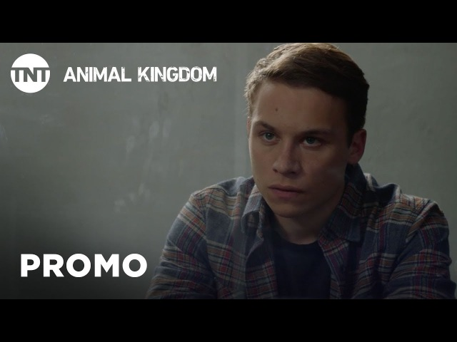 Animal Kingdom: Season 3 Promo (Official Teaser)