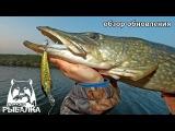 Вот это  рыбалка! Обновление и его последствия - Русская рыбалка 4