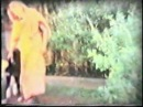 Bhagawan Sadguru Sree Sreedhara Swami rare video