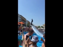 Дневное шоу в бассейне