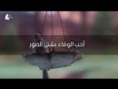محمد مقط احب الوفاء