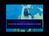 Усама Бен Ладен - Обращение к Палестинскому народу اسامة بن لادن - نداء الى الشعب الفلسطيني
