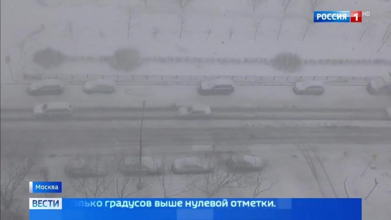 Весна в столице напомнит о себе лишь к следующей неделе - Россия 24