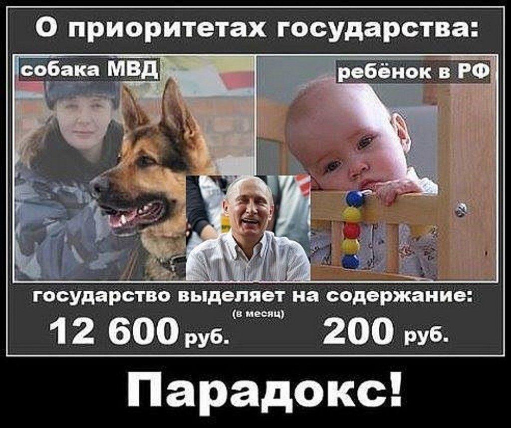 https://pp.userapi.com/c840131/v840131823/3c92/3ZmXilZ-6Sk.jpg