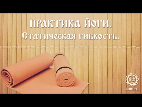 Йога для начинающих. Видео уроки. Практика йоги. Статическая гибкость. Роман Косарев
