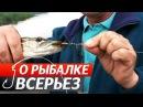 Ловля хищника выбираем приманки для ловли окуня щуки жереха О Рыбалке Всерьез