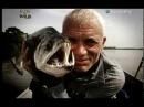 Речные монстры первый сезон 2 серия: Зубатка - убийца. River Monsters s1e2 Killer Catfish
