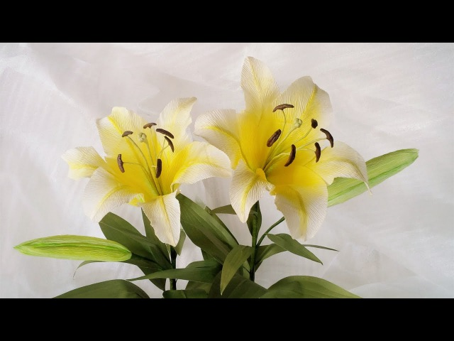ABC TV | How To Make Yellow Lily Paper Flower From Crepe Paper - Craft Tutorial