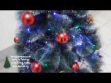 Новогодние елки дарят настроение