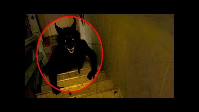 Загадочные существа : Призраки, Гномы, Демоны, Ангелы и Русалки 2