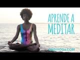 Como Meditar: Meditación para principiantes - ONDIYOGA