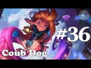 Coub Dog36 лучшие приколы за Март 2018