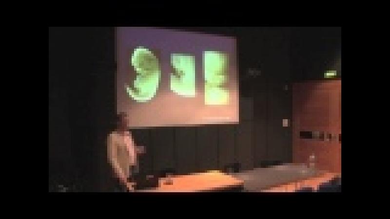 Prof Michael Richardson University of Leiden Institute of Biology Eco Evo Devo
