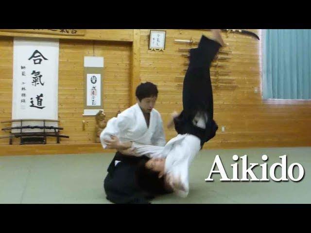 Dynamic Beautiful Aikido 03 ダイナミックで美しい合気道